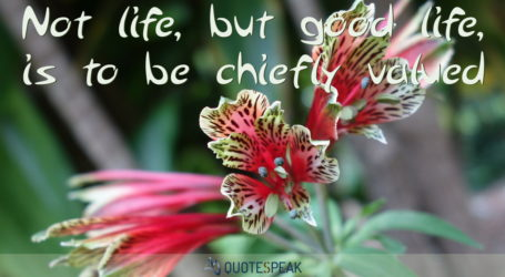 Life quote visualisation: Not life, but good life, is to be chiefly valued - Socrates