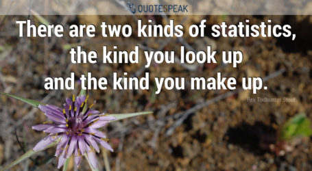 There are two kinds of statistics, the kind you look up and the kind you make up - Rex Todhunter Stout