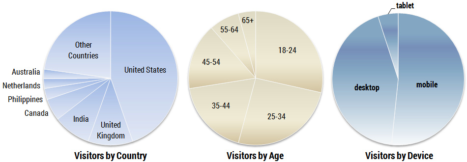 Visitor Demographics