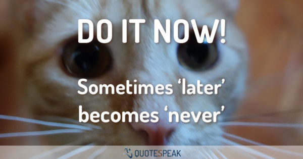 Time Quote: Do it now - Sometimes later becomes never