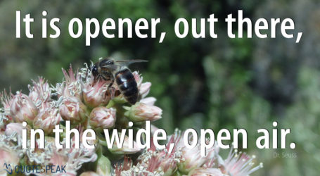 It is opener, out there, in the wide, open air – Dr Seuss