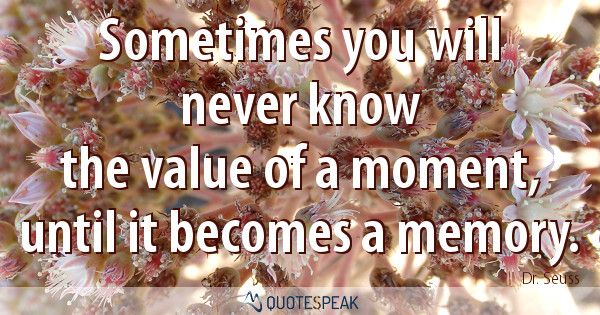 Sometimes you will never know the value of a moment, until it becomes a memory – Dr. Seuss