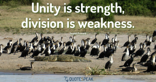 African Saying: Unity is strength division is weakness - Swahili Proverb