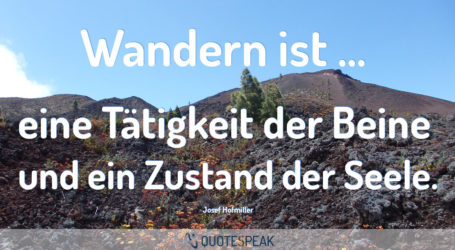 Urlaubsvertretung Wolfgangs Wandergruppe